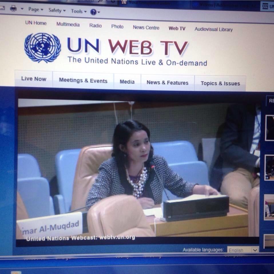 nwe at UN.jpg